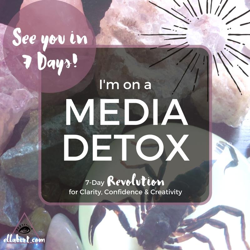 media detox revolution